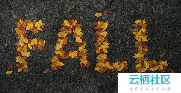 Photoshop制作非常有趣的秋季树叶字-拓印树叶真有趣ppt