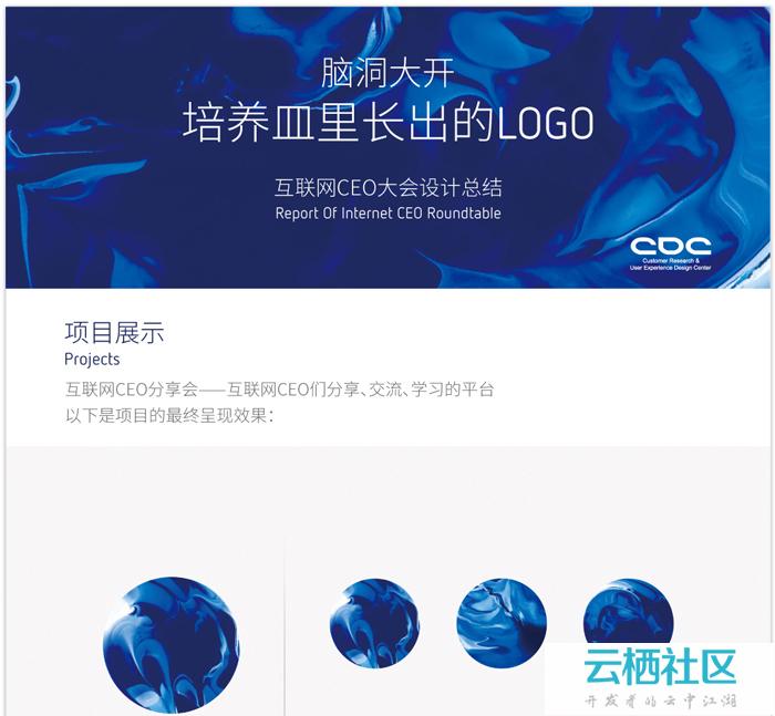 互联网CEO大会总结-互联网大会安保总结