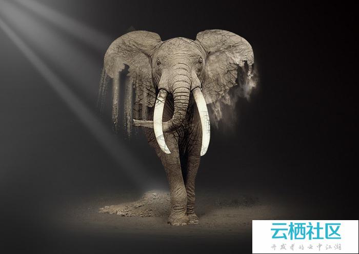 PS创意合成砂质化的大象-大象创意思维绘馆